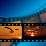 filme gratuite, filme online